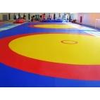 Борцовский ковёр 12х12х0,05м,Трёхцветный в комплекте с матами